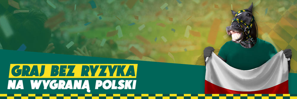 Zwrot na mecz Węgry - Polska